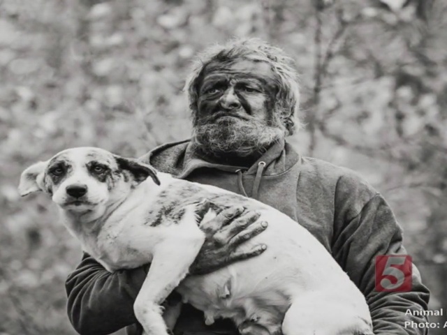 Mysterious Mountain Man Surrenders Life In The Woods With His Dogs