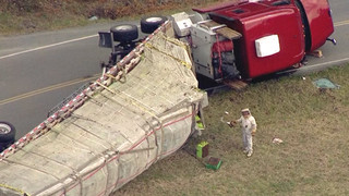 Bees escape after semi rolls in Tennessee