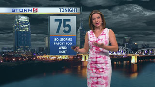 Bree's Forecast: Tuesday, July 26, 2016