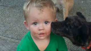 Missing Kentucky Toddler Found 2 Miles From Home