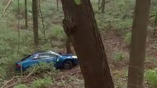 Car Found In Ravine Near Percy Warner Park