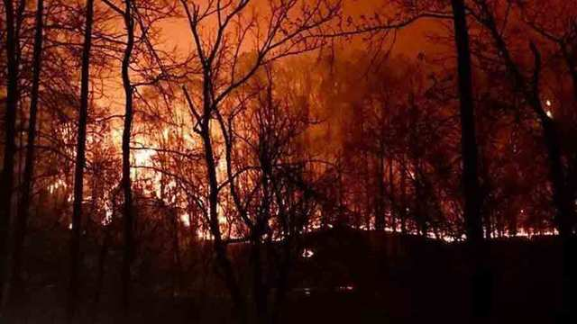 2 Juveniles Charged In Sevier County Wildfires