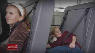 Vote On Seat Belt Resolution Delayed