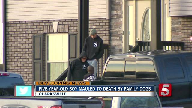 5-Year-Old Boy Mauled To Death By Family Dogs