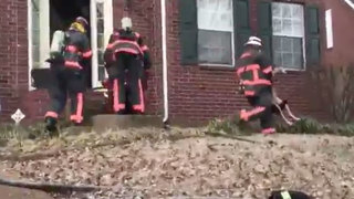 Firefighters Rescue Dog From House Fire