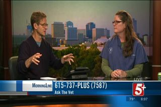 MorningLine: Ask The Vet (May 2017)