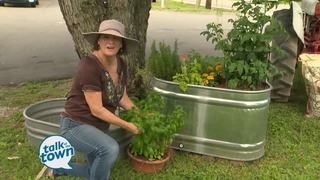 Lark Foster's Container Gardening Tips