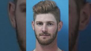 Predators' Watson charged with domestic assault