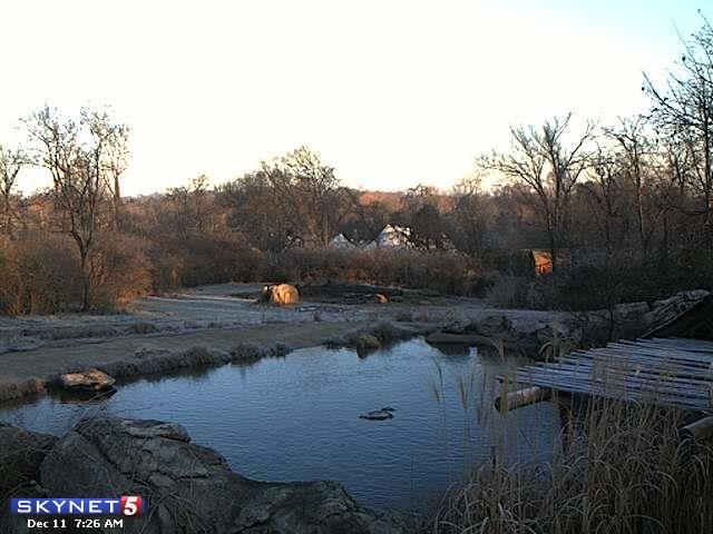 Nashville Zoo SkyNet