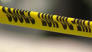 Skeletal Remains Found In Fairview