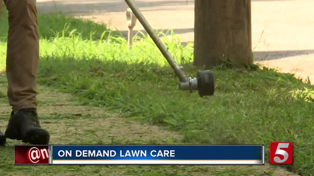 Nashville Based Company Greenpal Helping Lawn Care Pros Grow Small Businesses Newschannel 5