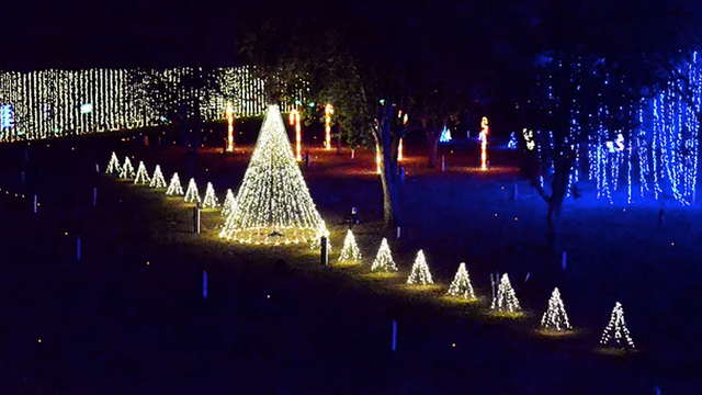 10 places to see holiday lights in middle tennessee - Where To Go See Christmas Lights