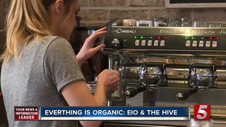 Everything Is Organic At Eio & The Hive