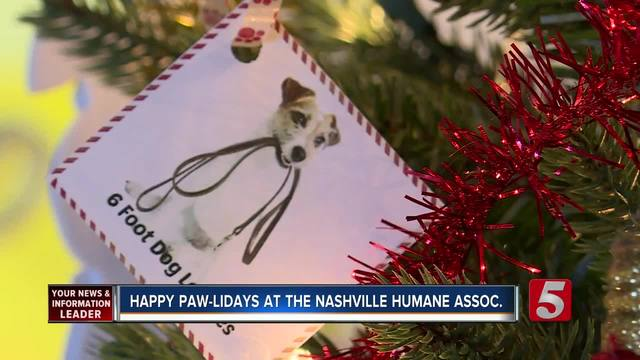 Nashville Humane Association Creates Holiday -Wish List- For Dogs -amp- Cats