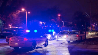 Woman Shot, Killed In Madison Carjacking