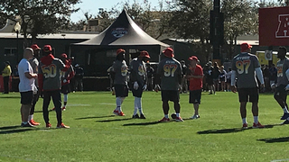 Titans' Players Relish Pro Bowl Experience