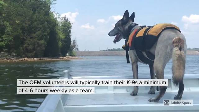 Metro-s OEM Demonstrates Body Recovery Exercise With K9s