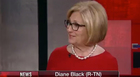 Diane Black Hopes To Crowdsource Border Wall