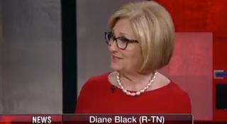 Diane Black Hopes To Crowdsource Border Wall