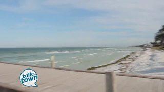Visit Florida Expert Shares Family Travel Ideas