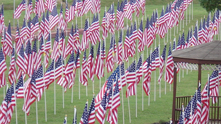 Hundreds Of Flags Displayed In Mt. Juliet