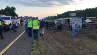 Overturned Cattle Trailer Shuts Down I-65