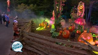 Dollywood's Harvest Celebration and LumiNights