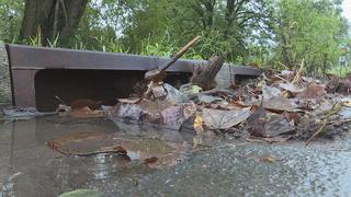 'Adopt A Storm Drain,' Help Keep Waterways Clear