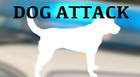 Four people injured in Clarksville dog attack
