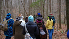 Tenn. parks offering free hikes for New Year